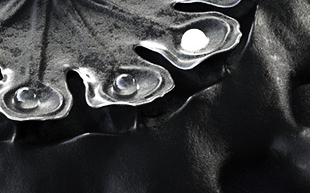 closeup of men's watch 'Organic Inspirations #1'